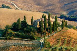 Toskana - Landschaft mit Zypressen