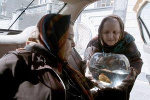 Szenenbild - Taxi Teheran