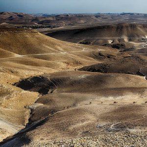 Negev-Wüste