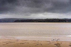 Szenenbild - The Bay